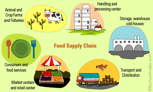 global food supply chain Supply chain risk is a major threat to business continuity supply chain risk management can protect client revenue, market share, costs, production and.